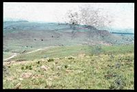 Looking north west to slopes on which was located plot 139/81.  Taken from 138/81. 139/81: Erasmus Damn - Drakensberg No 2 Location