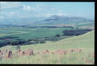 Looking south east to Arthur's Seat from farm Riverview vicinity plot 112/81