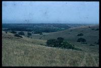 Amatikulu Reserve