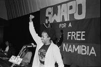 Cheryl Carolus, SWAPO meeting
