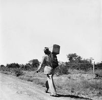 Man carrying a trunk along a road, Transkei, South Africa