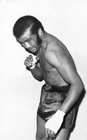 Boxer with bandaged hands, Eastern Cape, South Africa