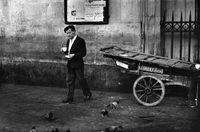 Man drinking tea amongst pigeons