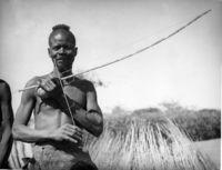 Mbulumbumba braced gourobow