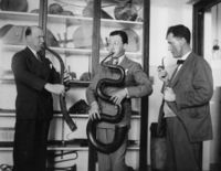 """Professor Percival R. Kirby performing upon the """"Serpent"""", a wind instrument, 300 years old"""