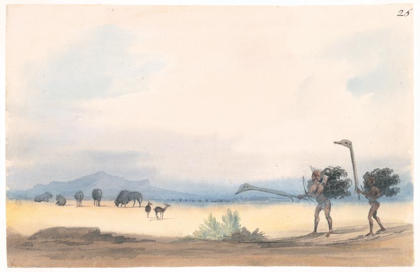 Bushmen hunting