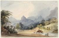 Rhinoceros at Bay - Mountain Scenery. Matselikats country