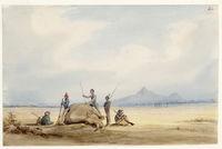 Rhinoseros - the death