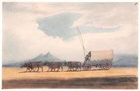 Travelling Bullock Waggon