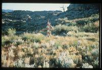 Cedar Preserve