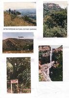 Witwatersrand National Botanical Garden