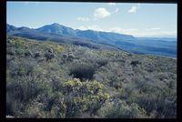 Baviaanskloof Nature Reserve