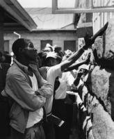 Employment Bureau of Africa, Maseru