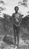 The tallest woman among the Bushmen. Shove Angola !kung at Kutsi. D.F. Bleek