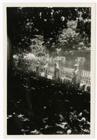 Black Sash Demonstration outside Parliament, Cape Town, 1950s]