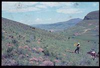 133/81. Looking west [Upper Tugela Location: slopes opposite Zinyonyana][227]
