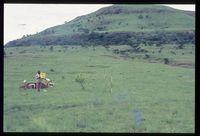 120/81. Looking south onto north slopes of Nkunzana [Zunkels - Rietvallei . Lower north Slopes Nkunzana]