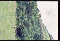 119/82. Looking south onto northern slopes of Nkunzana