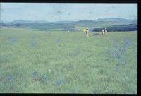 122/81. Looking west north west [Erasmus Dam - Stockhill]