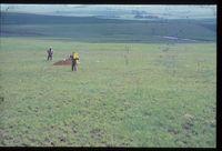 128/81. Looking west [Vaal Bank (farm) - Tretchler (farm owner)]